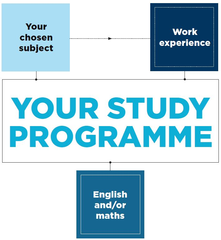 Your chosen subject / Work Experience both feed into Your study programme and will run along side English and/or maths if you need to study these.