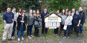 Students put their skills into action with Merseyside Dogs Home